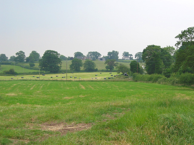 Fields at Martin's Ash
