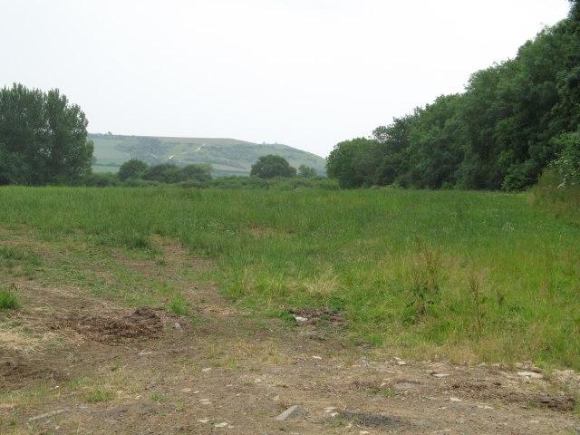 View towards Beacon Hill