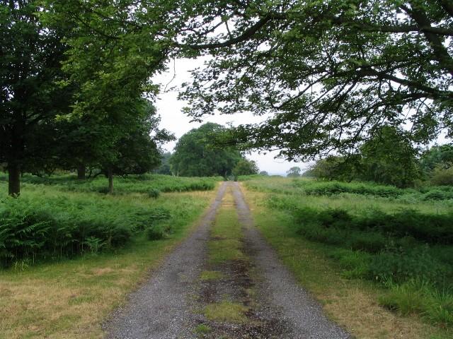 Footpath, Loton Park