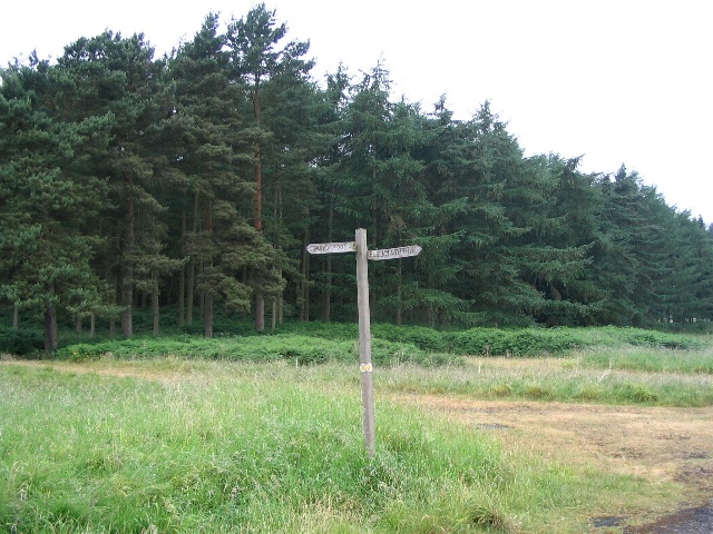 Footpath guide post, Loton deer park