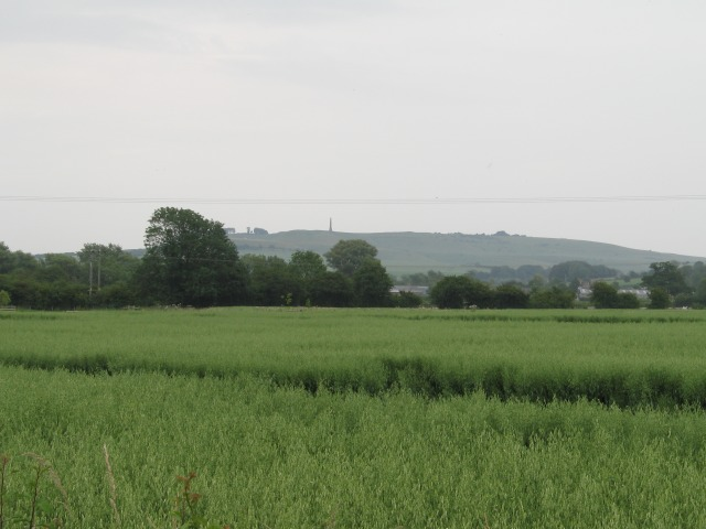 View over crop towards Landsdowne Monument