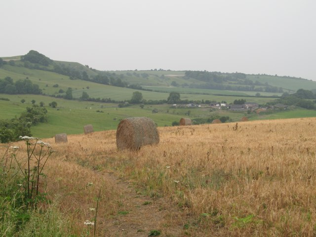 Hayfield with view of Kings Play Hill