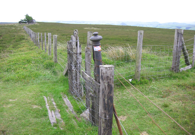 A meeting of fences