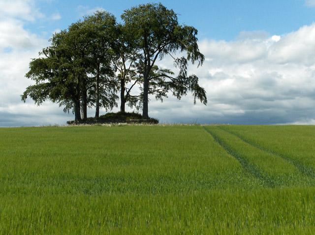 Ancient cairn, Craighead