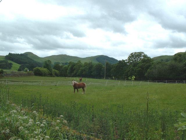 The Scaur Valley, Dumfriesshire