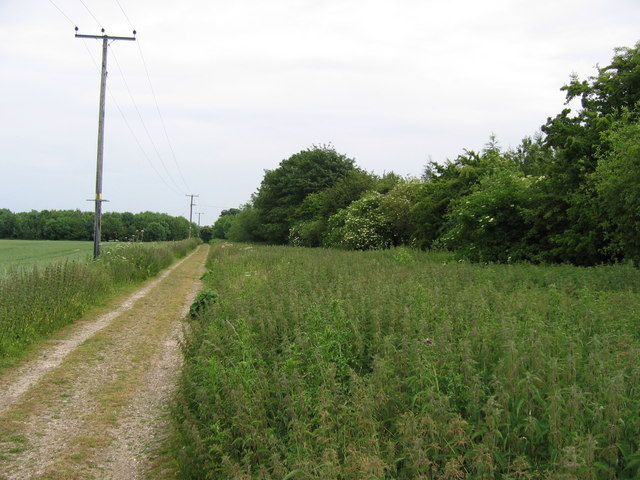 Track South of Tickton