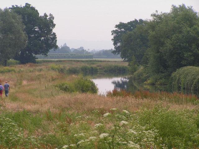 River Medway and flood plain.