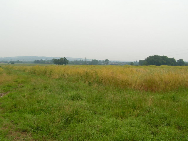 Pasture land, west of Golden green.