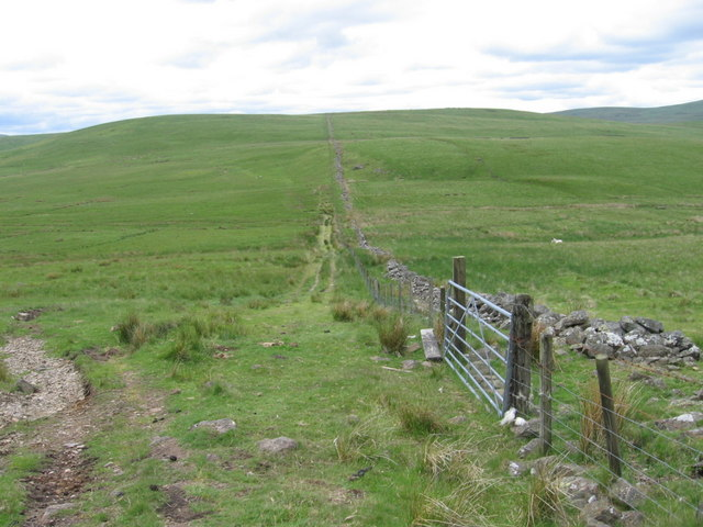 Fence and county boundary