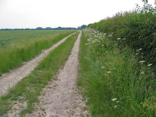 Bridleway to Weel Carr