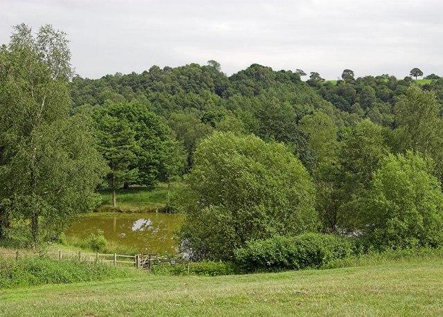 Consall Nature Park