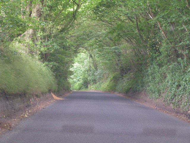 Sunken Lane near Capel