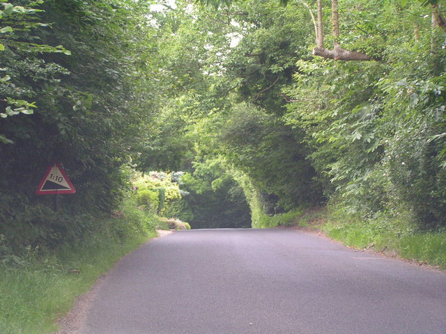 Wooded road, near Matfield.