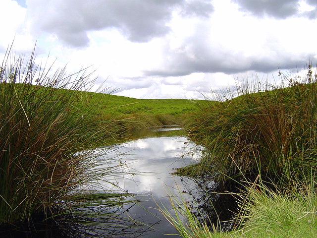 Dundale pond, Levisham Moor.