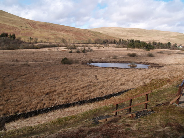 Looking North from Ettrick Marshes Walk