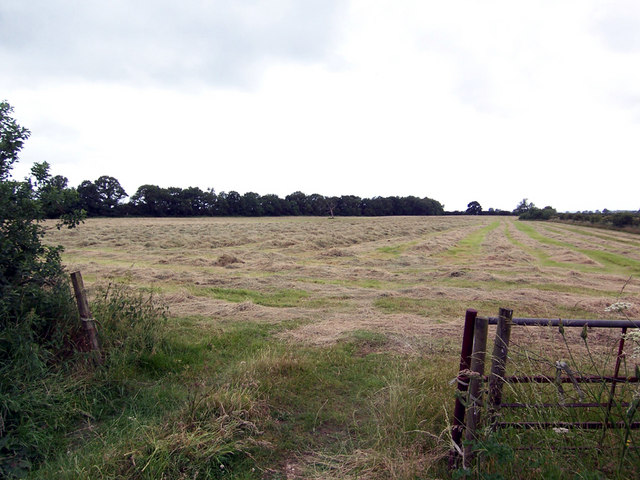Hay Field off Owmby Lane
