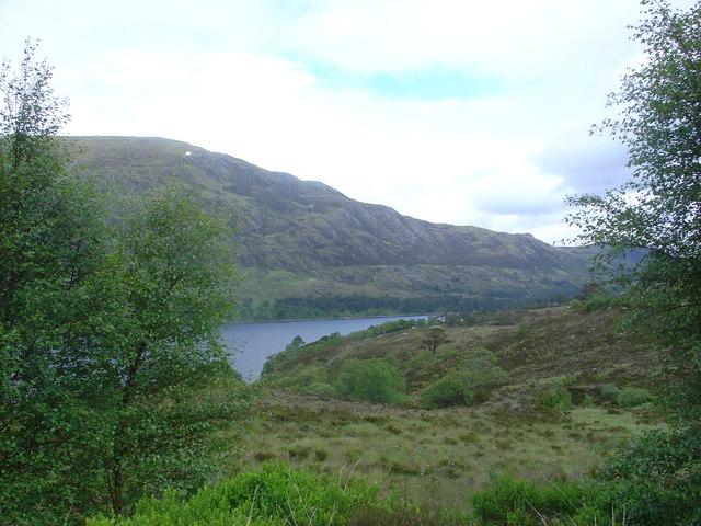 Birch trees framing Loch Affric