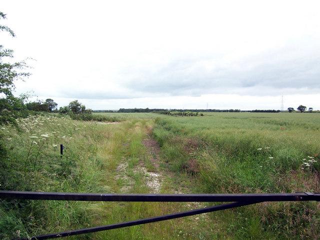 Near Searby Moor Farm