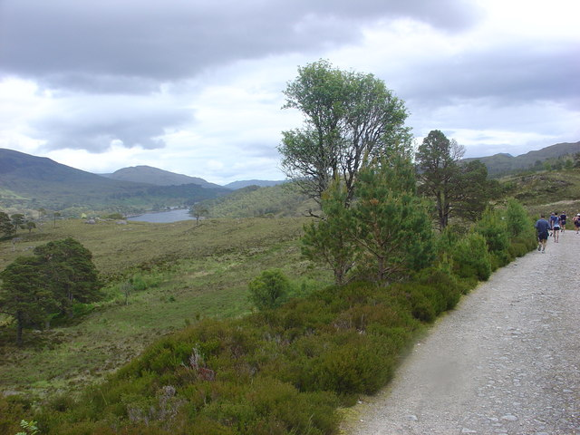 East towards Affric Lodge