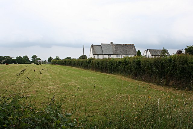 Grass and Houses