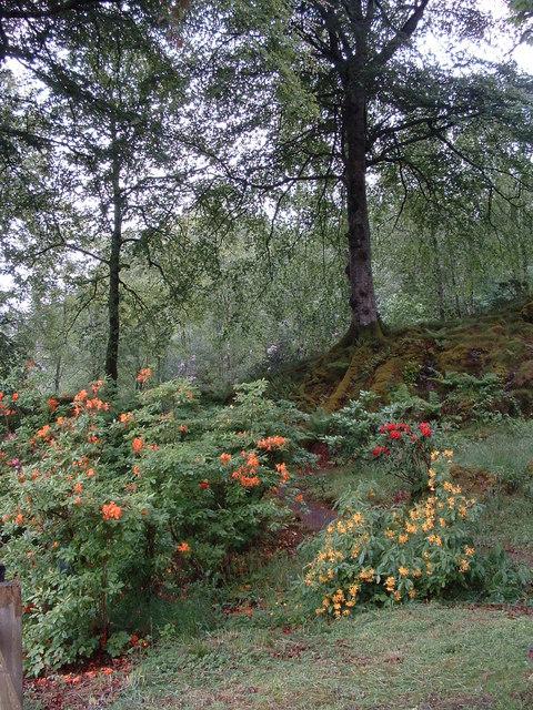 Gardens at Druimnavuic house