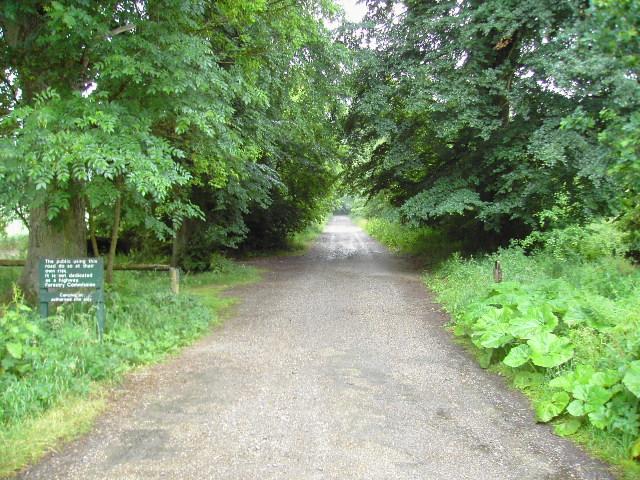 Entrance to Savernake Forest