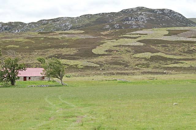 Croft land by Duchallow