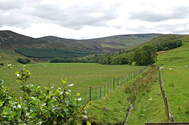 Fields by Glen Beag