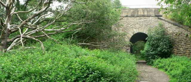 Bridge under railway, Clayton Woods
