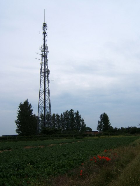 Radio mast by Sandlings Walk
