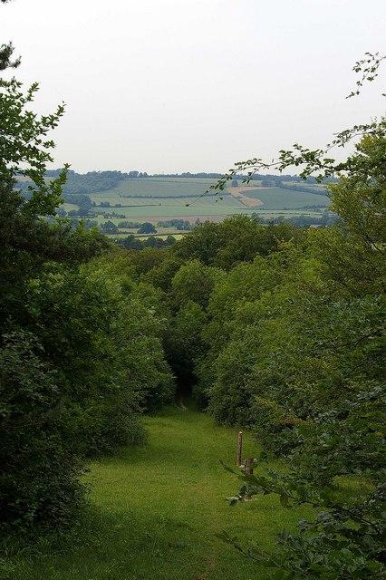 Path to Shoreham