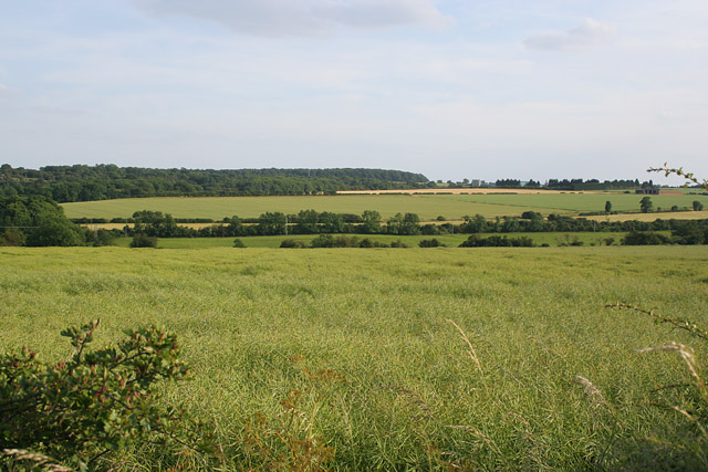 Countryside near Ketton