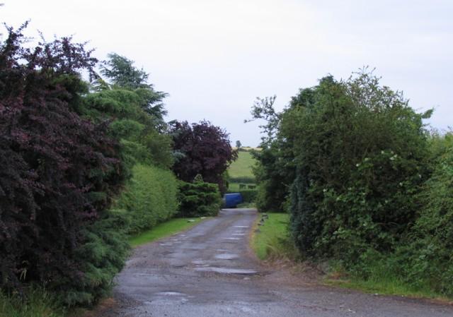 Stordon Grange Driveway