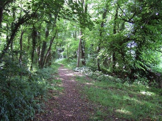 Footpath, Battlescombe