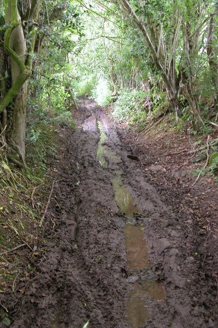 Muddy track near Brilley
