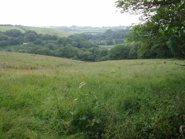 Stream valley at Wheal Fortune