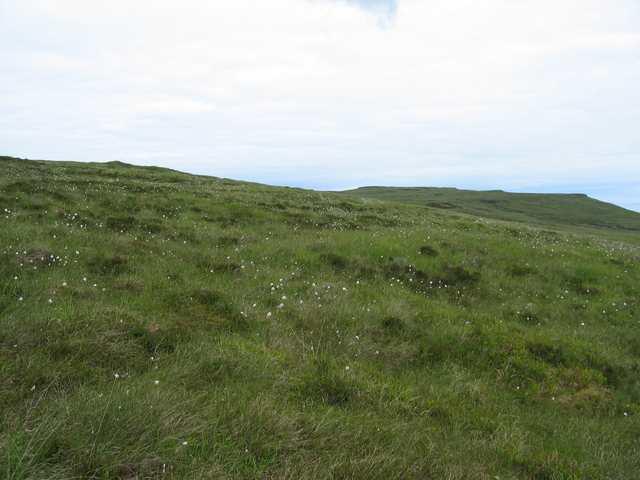 Moorland in Waternish