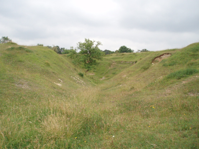 Uneven ground on Selsley Common
