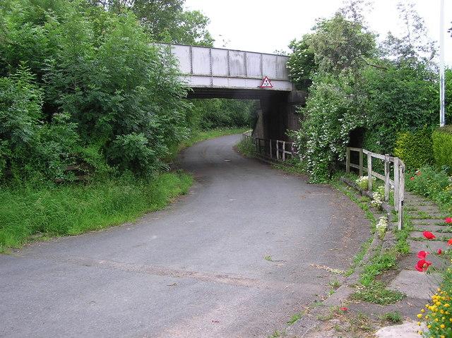 Low Goosepool : Railway Bridge.