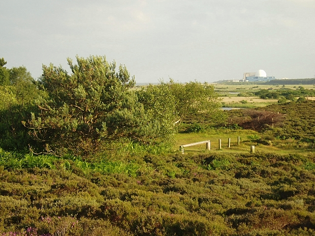 View south from Dunwich Heath
