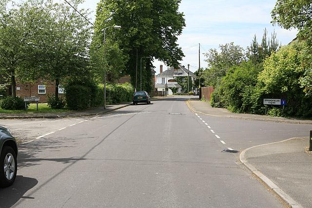 Spring Lane, Colden Common