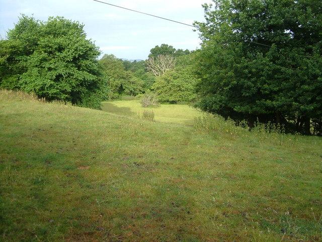 Fields near Shobrooke Mill