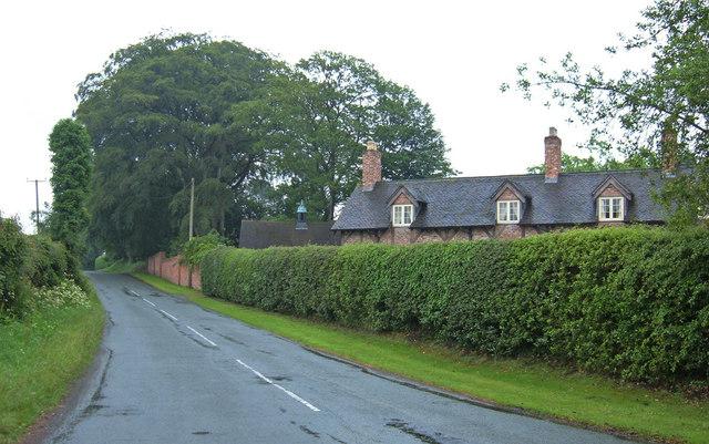 Cassia Green Lane