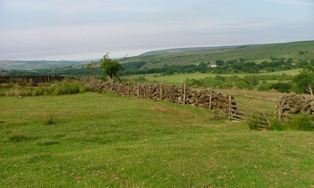 Moor Wall, Egton Grange