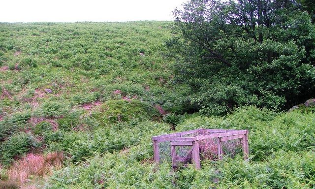 Disused Larsen Trap, Birchwath Slack