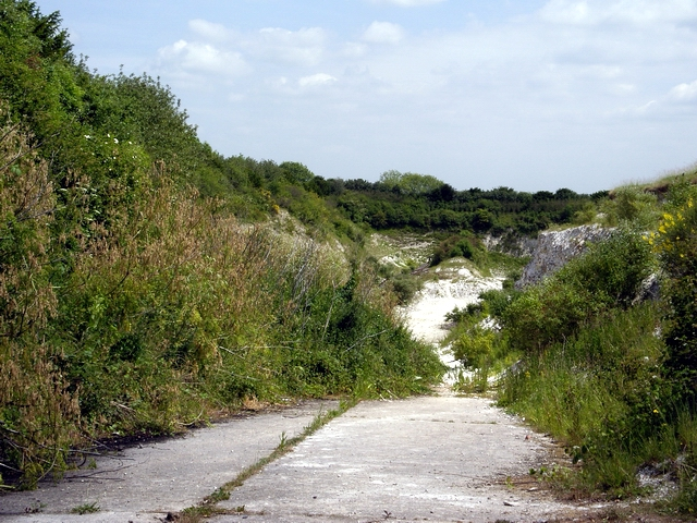 Disused Chalk quarry south of East Grimstead
