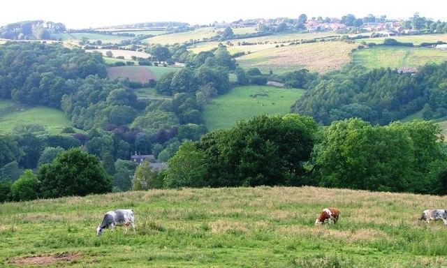 Pasture, Key Green