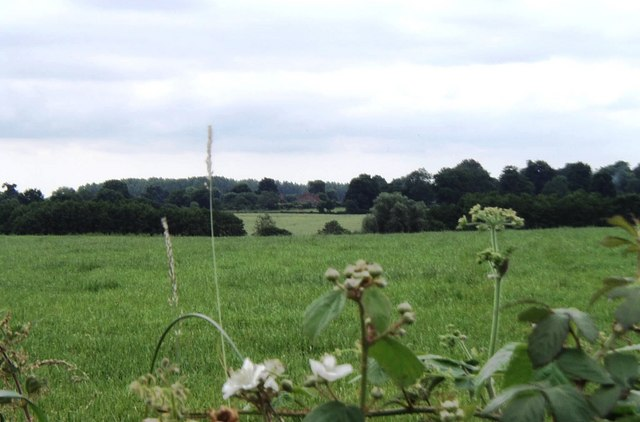 View to the south-east of the lane from Westwell Leacon to Little Chart