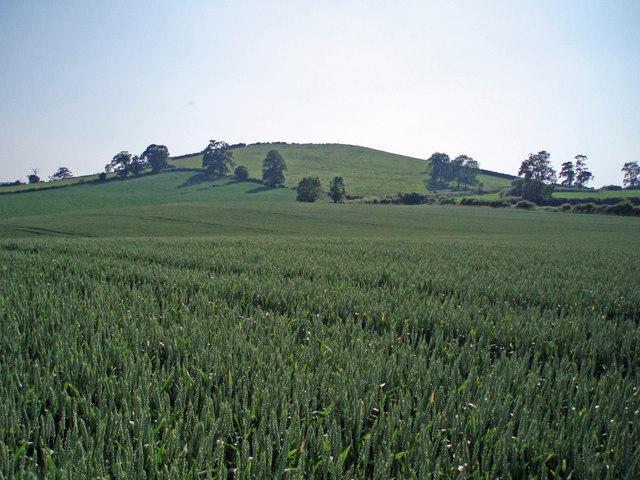 Winsbury Hill