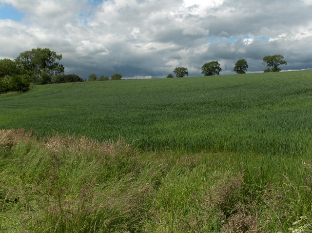Farmland, McOrriston